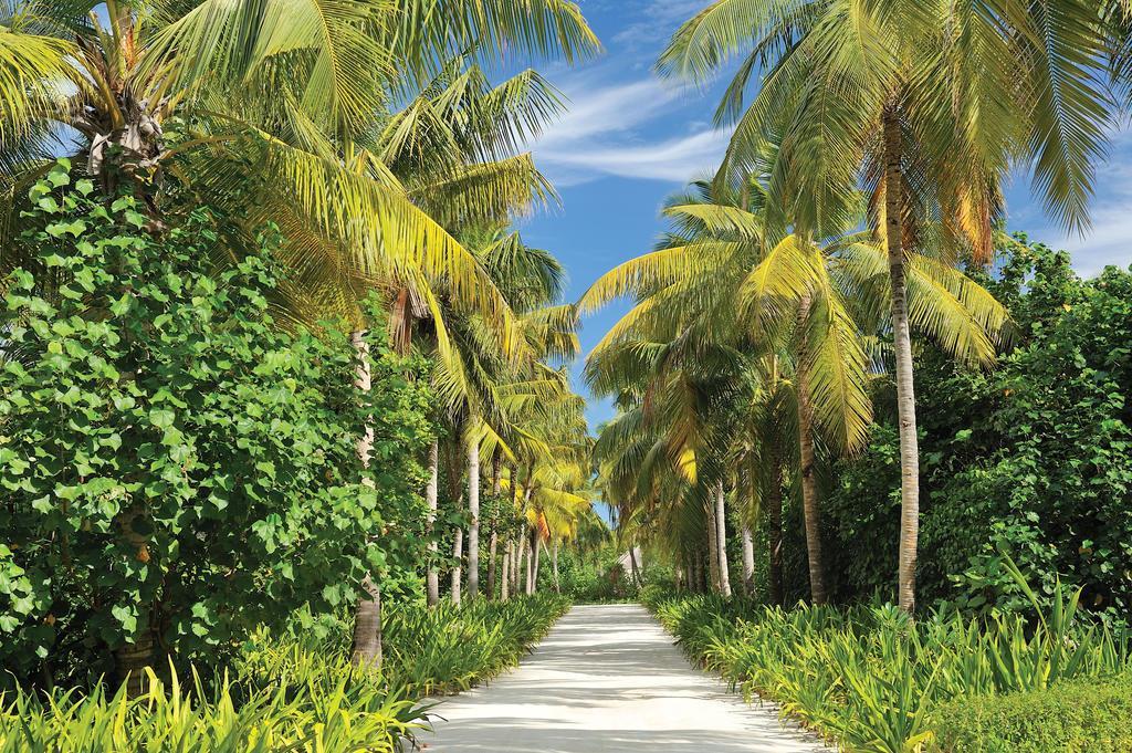 ayada-maldives-genel-004
