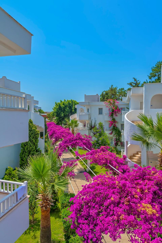 bendis-beach-hotel-genel-005