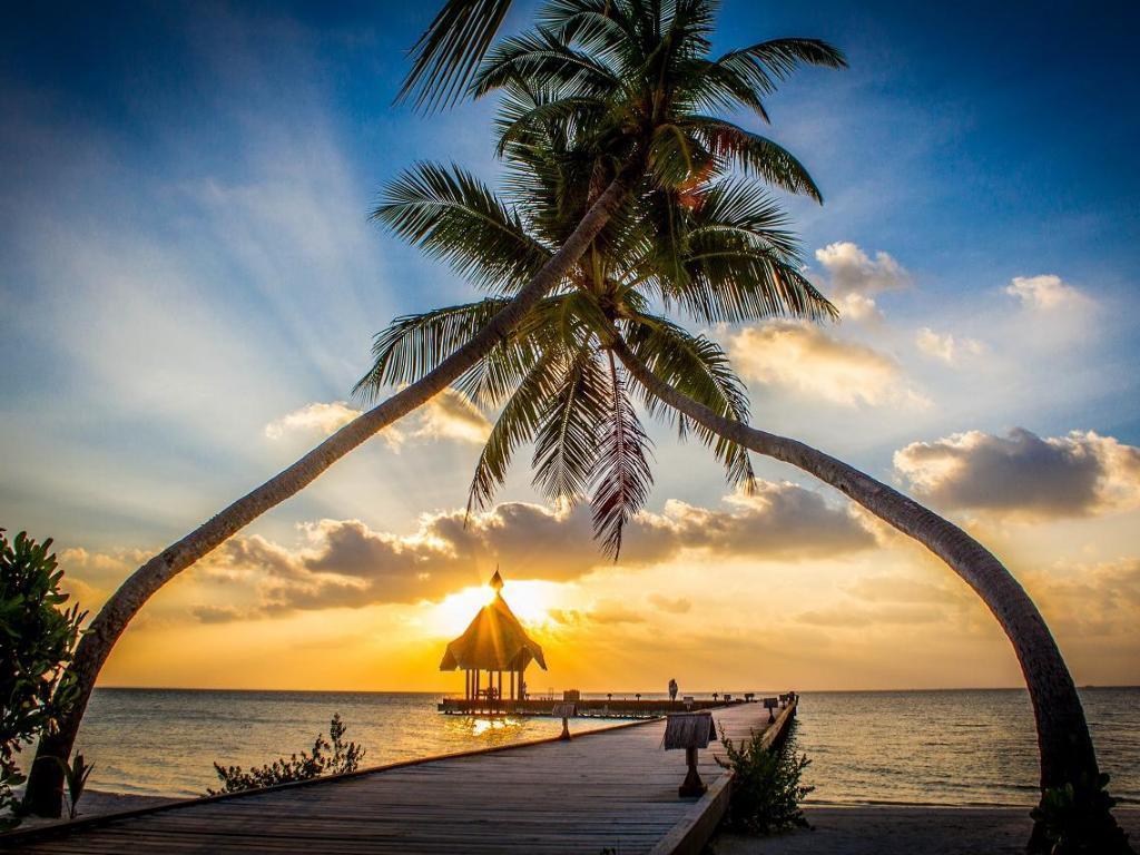 canareef-resort-maldives-spa-003