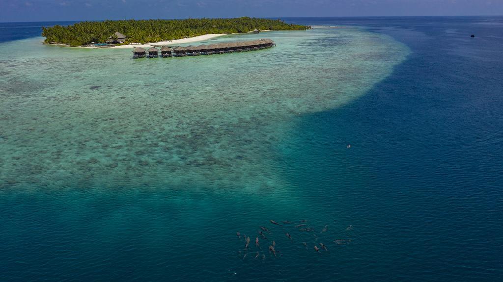 filitheyo-island-resort-genel-0023