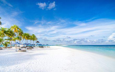 finolhu-maldives-genel-0026