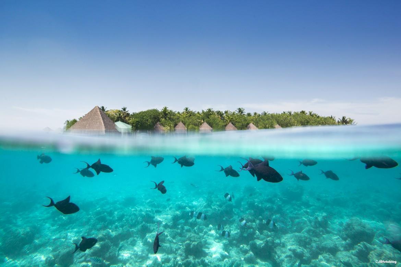 gangehi-island-resort-genel-0026
