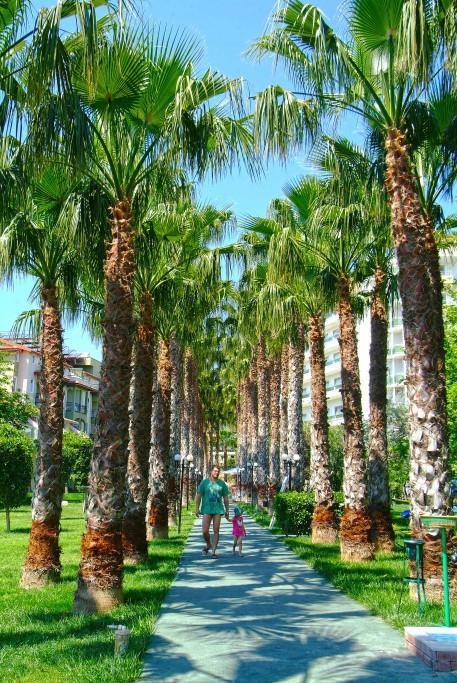 gardenia-beach-hotel-010