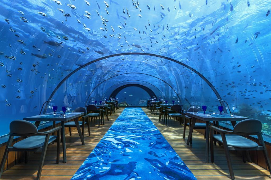 hurawalhi-resort-maldives-genel-0023