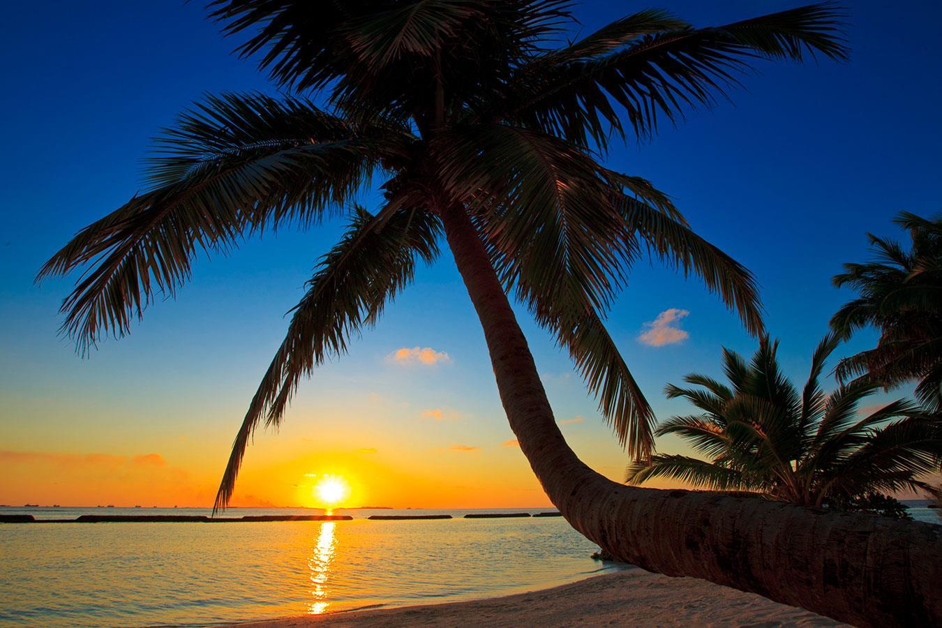 kurumba-maldives-genel-004
