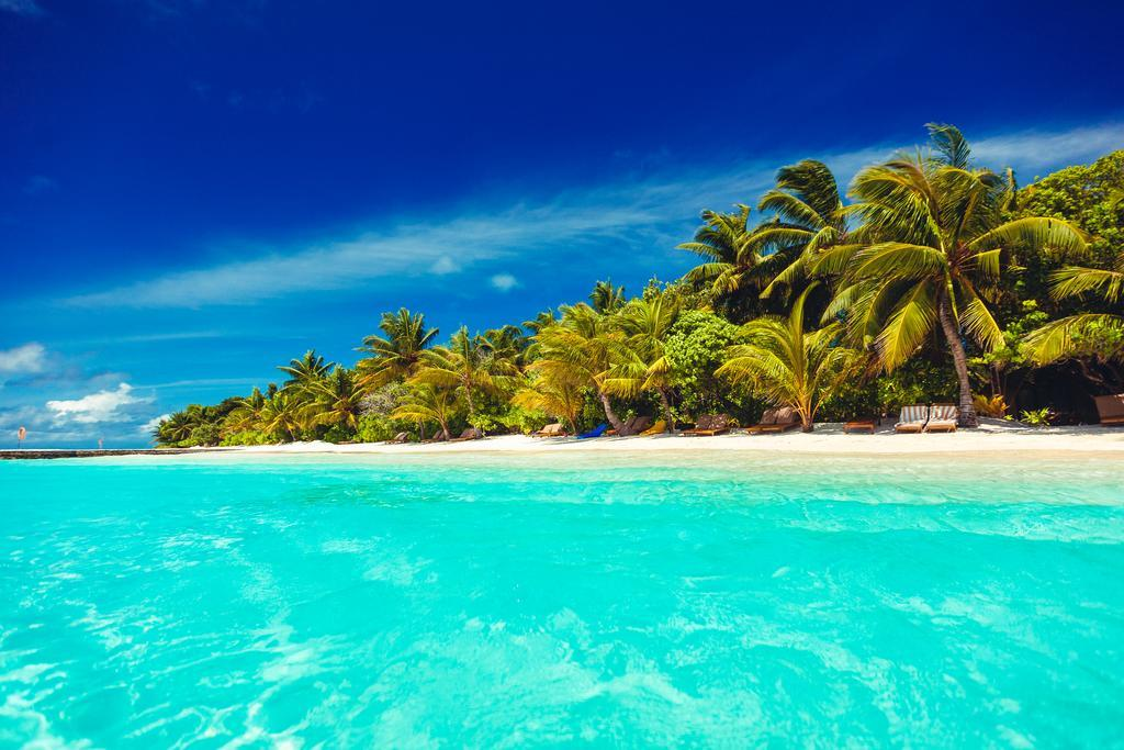 lily-beach-resort-spa-at-huvahendhoo-genel-0028