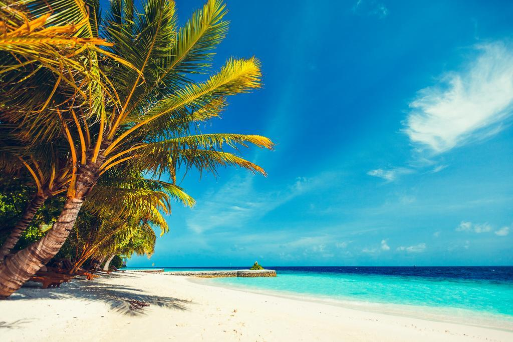 lily-beach-resort-spa-at-huvahendhoo-genel-0029