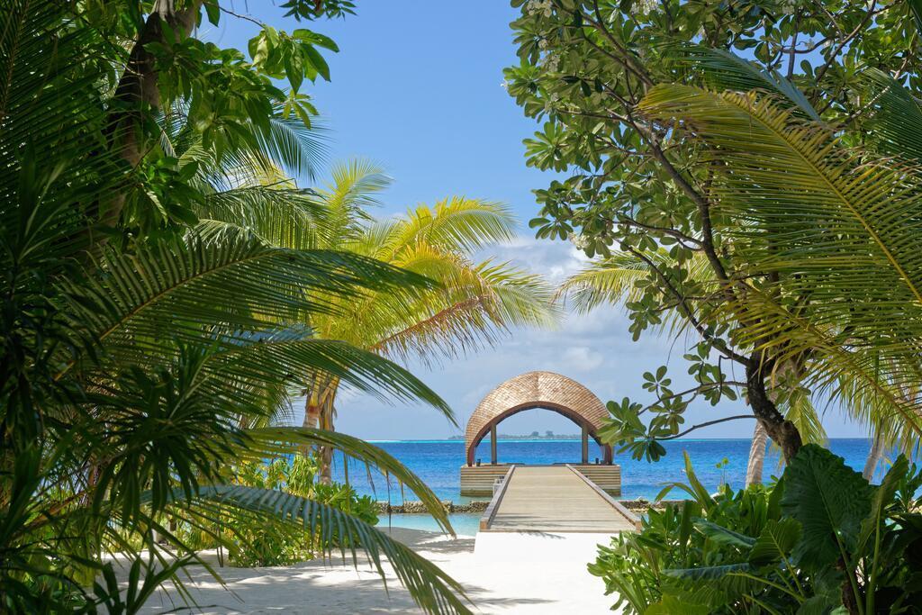 maafushivaru-island-resort-genel-0017