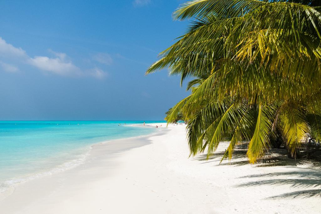 meeru-island-resort-spa-genel-0011