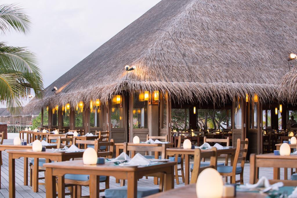 meeru-island-resort-spa-genel-0025