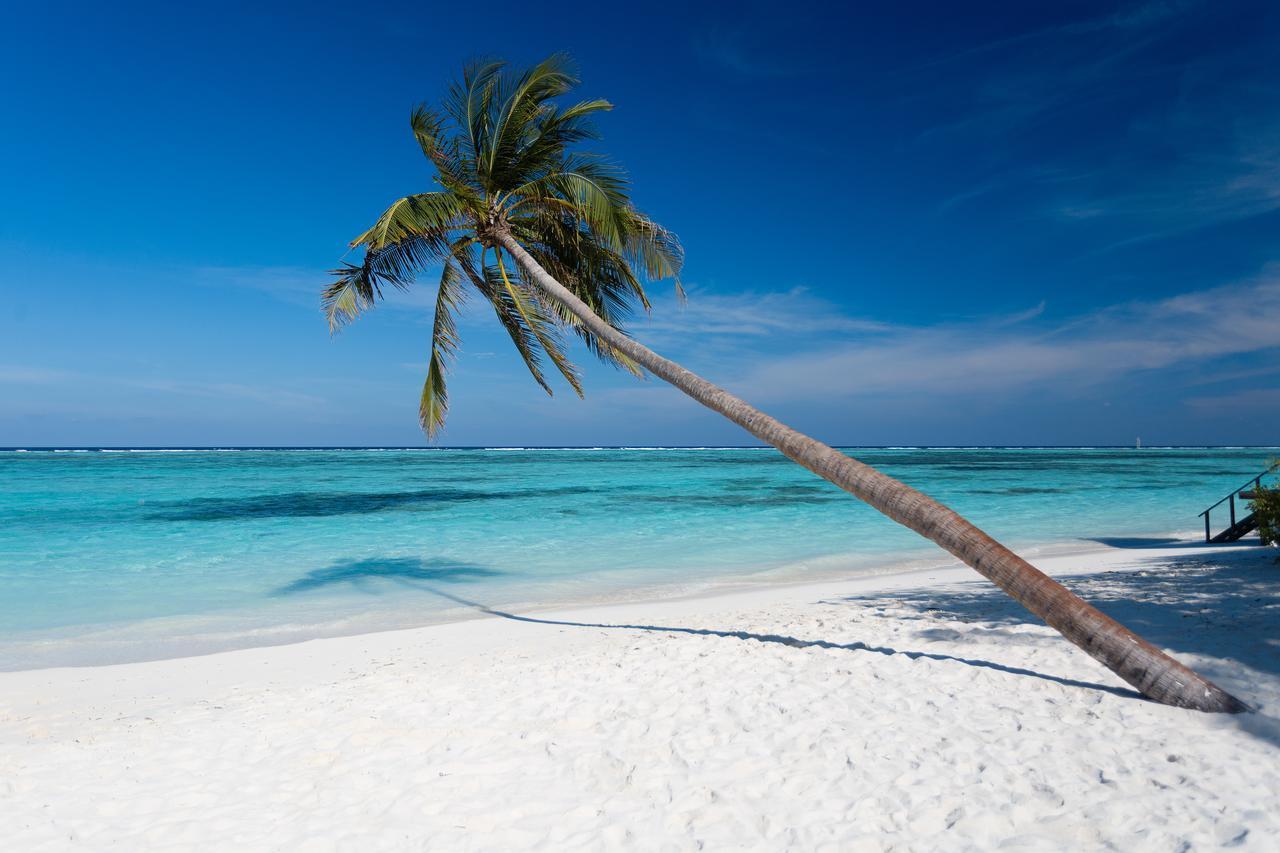 meeru-island-resort-spa-genel-005