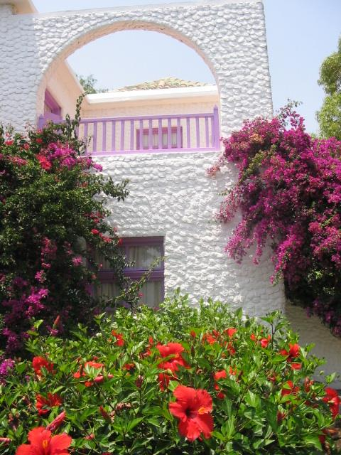 merit-cyprus-gardens-holiday-village-003