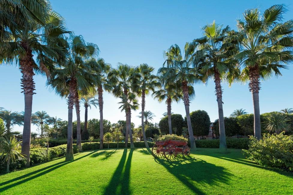 miracle-resort-hotel-034