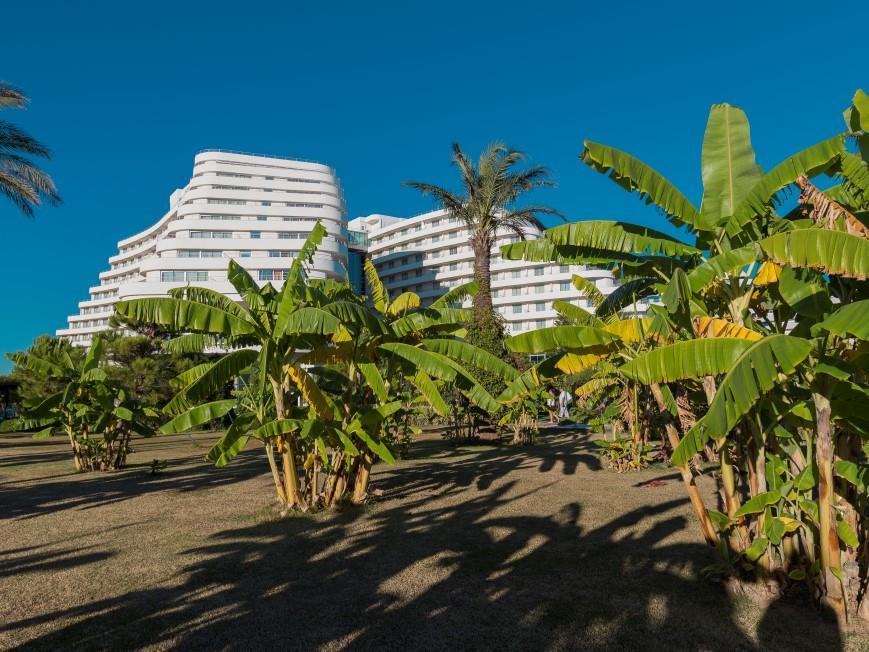 miracle-resort-hotel-037