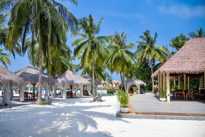 reethi-faru-resort-genel-0018