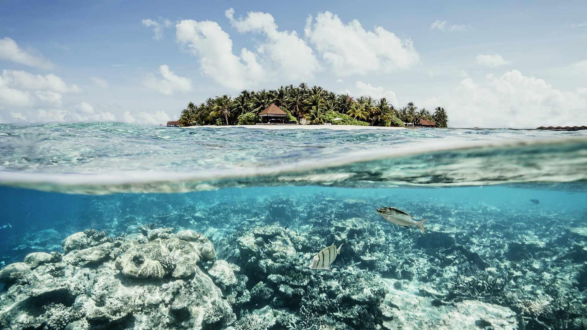 robinson-club-maldives-genel-0028