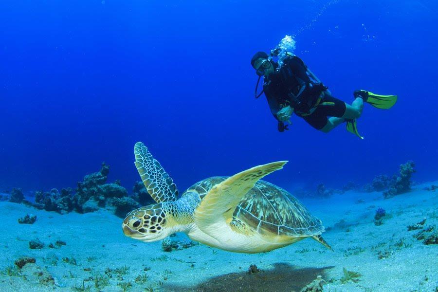 summer-island-maldives-genel-009